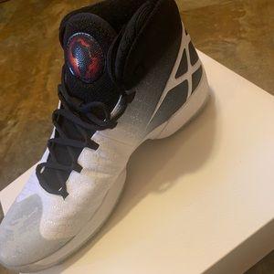 Air Jordan XXX Shoes